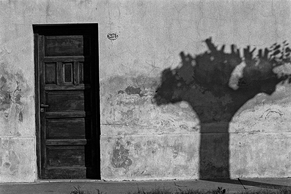Puerta y sombra